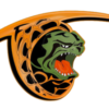 Logo-Fighting-Turtles-2-300x224